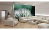 Fotobehang Bloemen | Groen, Wit | 104x70,5cm