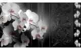 Fotobehang Vlies | Bloemen, Orchidee | Zwart | 368x254cm (bxh)
