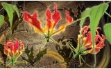 Fotobehang Vlies | Bloemen | Rood, Groen | 368x254cm (bxh)