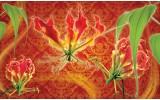Fotobehang Vlies | Bloemen | Oranje, Rood | 368x254cm (bxh)