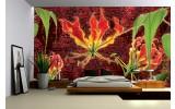 Fotobehang Bloemen | Rood, Groen | 152,5x104cm