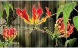Fotobehang Papier Bloemen | Groen, Rood | 368x254cm