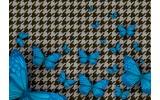 Fotobehang Papier Vlinder | Blauw, Grijs | 254x184cm