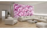 Fotobehang Bloemen, Rozen | Roze | 104x70,5cm