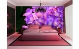 Fotobehang Bloemen | Paars, Roze | 312x219cm