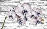 Fotobehang Papier Bloemen, Orchidee | Grijs | 254x184cm