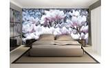 Fotobehang Bloemen, Magnolia | Roze | 152,5x104cm