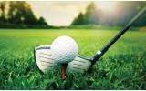 Fotobehang Vlies   Golf   Groen, Wit   368x254cm (bxh)