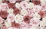 Fotobehang Papier Rozen, Bloemen | Roze | 368x254cm