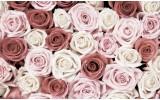 Fotobehang Vlies | Rozen, Bloemen | Roze | 368x254cm (bxh)