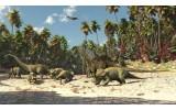 Fotobehang Jungle, Dinosaurussen | Groen | 104x70,5cm
