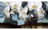 Fotobehang Orchidee, Bloemen | Wit | 104x70,5cm