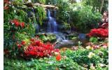 Fotobehang Natuur | Groen, Rood | 416x254