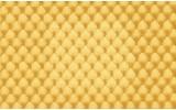 Fotobehang Vlies | Klassiek | Geel | 368x254cm (bxh)