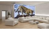 Fotobehang Wilde Dieren | Blauw | 104x70,5cm