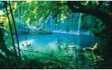 Fotobehang Natuur | Groen, Blauw | 416x254