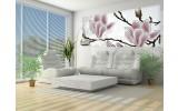 Fotobehang Bloemen, Magnolia | Grijs | 250x104cm