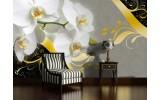 Fotobehang Bloemen, Orchidee | Grijs | 152,5x104cm