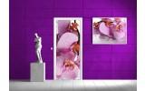 Deursticker Muursticker Bloemen | Roze | 91x211cm