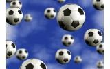 Fotobehang Vlies | Voetbal | Blauw | 368x254cm (bxh)