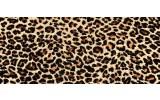 Fotobehang Luipaard, Dieren | Bruin | 250x104cm