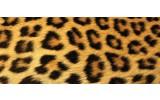 Fotobehang Luipaard | Bruin | 250x104cm