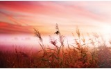 Fotobehang Natuur | Roze | 104x70,5cm