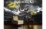Fotobehang Papier Voetbal | Grijs, Geel | 368x254cm