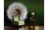 Fotobehang Paardenbloem | Groen, Wit | 208x146cm