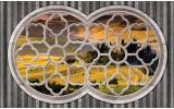 Fotobehang Papier Natuur, Slaapkamer | Grijs, Geel | 368x254cm