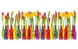 Fotobehang Bloemen, Tulpen | Rood | 250x104cm
