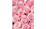 Fotobehang Papier Bloemen, Rozen | Roze | 184x254cm