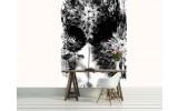 Fotobehang Papier Paardenbloem   Wit, Zwart   184x254cm