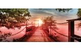 Fotobehang Natuur, Brug | Groen | 250x104cm