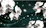 Fotobehang Orchideeën, Bloemen | Wit | 208x146cm