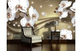 Fotobehang Orchideeën, Bloemen | Wit |