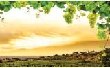 Fotobehang Natuur | Geel, Groen | 104x70,5cm