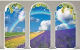 Fotobehang Papier Natuur, Regenboog | Blauw | 368x254cm