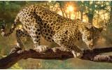 Fotobehang Vlies | Jaguar, Dieren | Geel | 368x254cm (bxh)