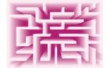 Fotobehang Vlies | Design, Doolhof | Roze | 368x254cm (bxh)