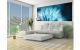 Fotobehang Bloemen   Blauw   250x104cm
