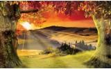 Fotobehang Papier Natuur, Zonsondergang | Oranje | 254x184cm