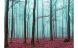 Fotobehang Bos, Natuur | Blauw | 208x146cm