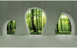 Fotobehang Papier Bos, Muur | Groen | 254x184cm