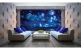 Fotobehang Nacht, Maan | Blauw | 104x70,5cm