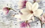 Fotobehang Bloemen, Magnolia | Crème | 312x219cm
