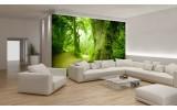 Fotobehang Papier Boom | Groen | 368x254cm
