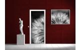 Deursticker Muursticker Natuur | Wit | 91x211cm
