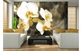 Fotobehang Orchidee, Bloemen | Geel | 208x146cm