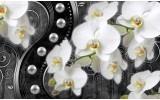 Fotobehang Papier Orchidee, Bloemen | Wit, Zwart | 368x254cm